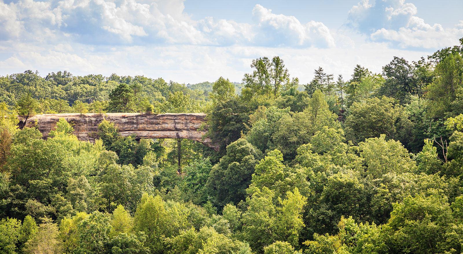 Red River Weather Natural Bridge Red River Gorge