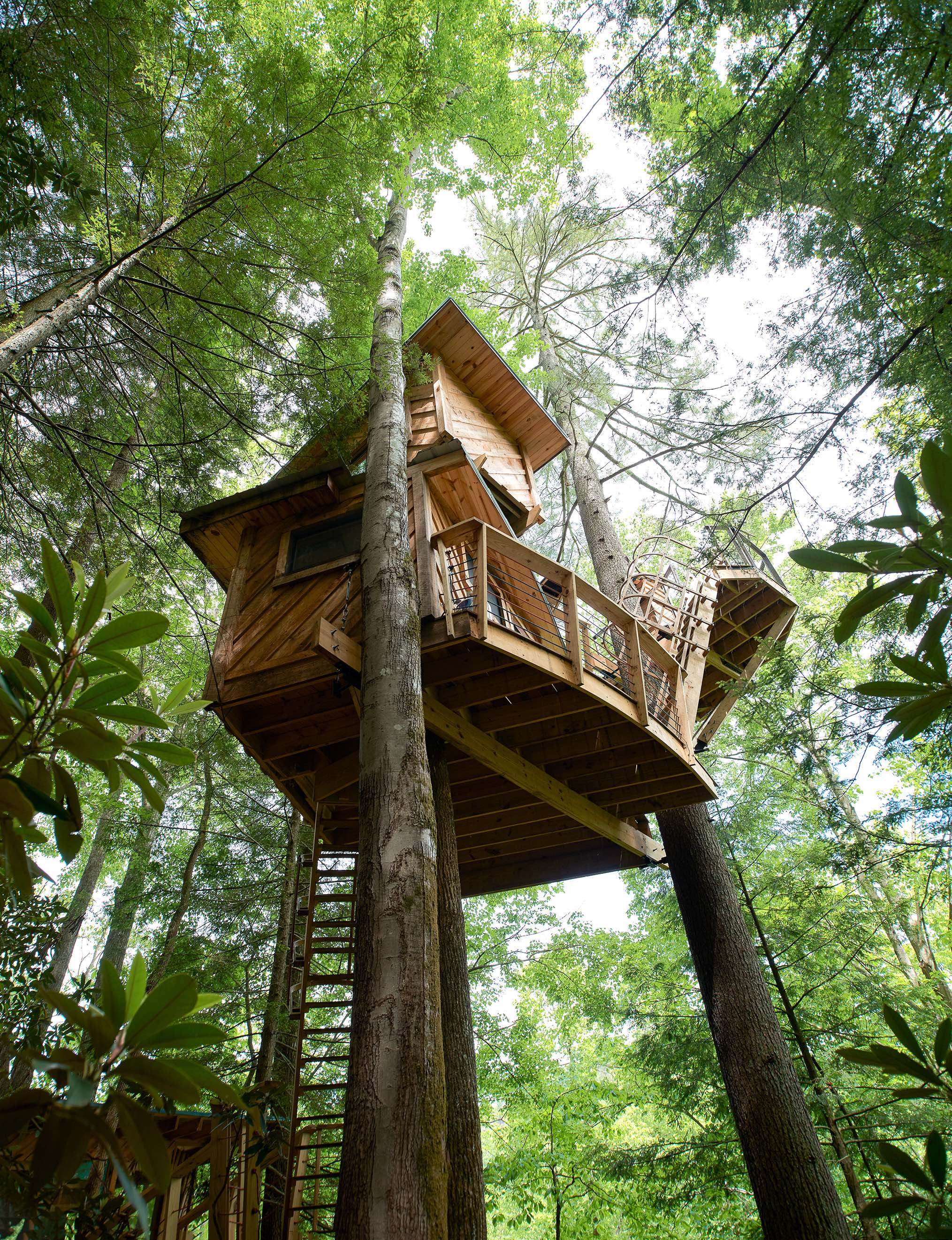 Red River Gorgeous and Canopy Crew's Observatory Treehouse